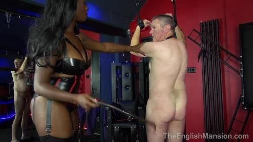 Trophy Wifes Surprise - Part 3. Stariing Miss Foxx