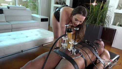 Mistress Chanel - Manhood Extractor