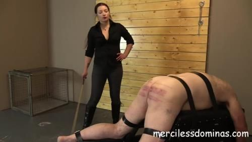 Goddess Sophia - Caned For His Crimes