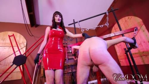 Lexi Luna - Lexi Punishes And Degrades