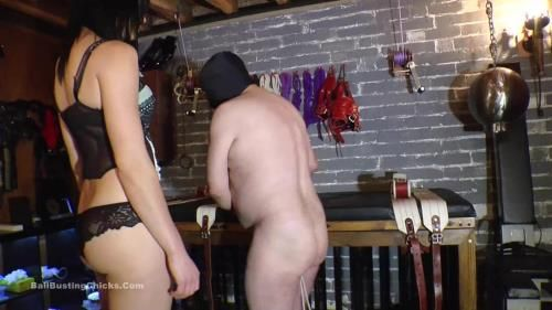 Misstress Pip - Leashed And Bruised