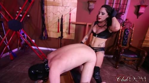 Goddess Cleo - Beg For My Cock