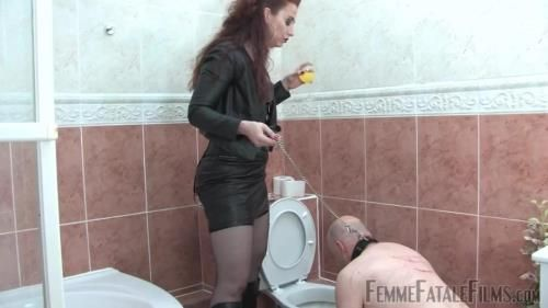 Mistress Lady Renee - Toilet Licker - Complete Film