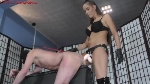 Mistress Amanda - Force Fucked By Amanda