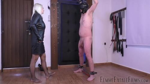 Divine Mistress Heather - Hung Out To Bust - Part 1