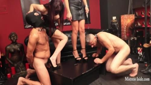 Mistress Iside - Micro Penis Destruction