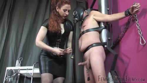 Mistress Lady Renee - Up Against The Wall