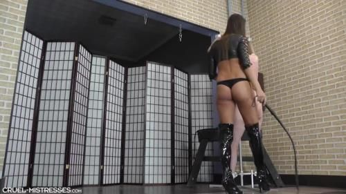 Mistress Amanda - Hard Strokes With A Long Whip