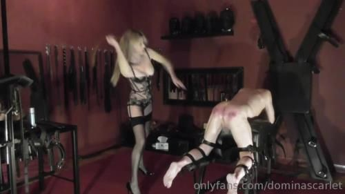 Domina Scarlet - Thirty Six Strokes Of The M Cambell Strap